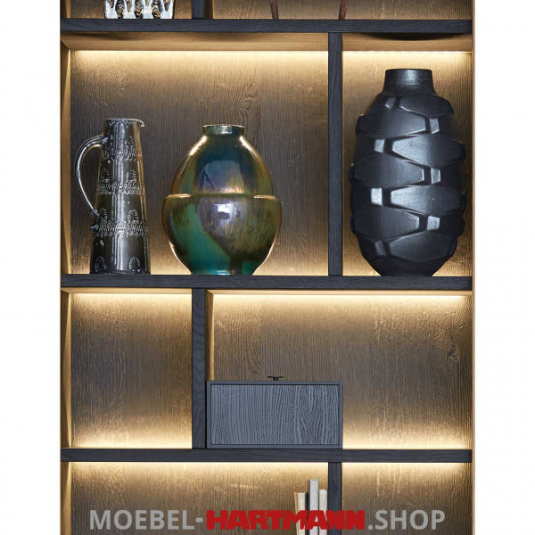 Schöner Wohnen Craft Regal-Beleuchtung 9614 23,04 Watt
