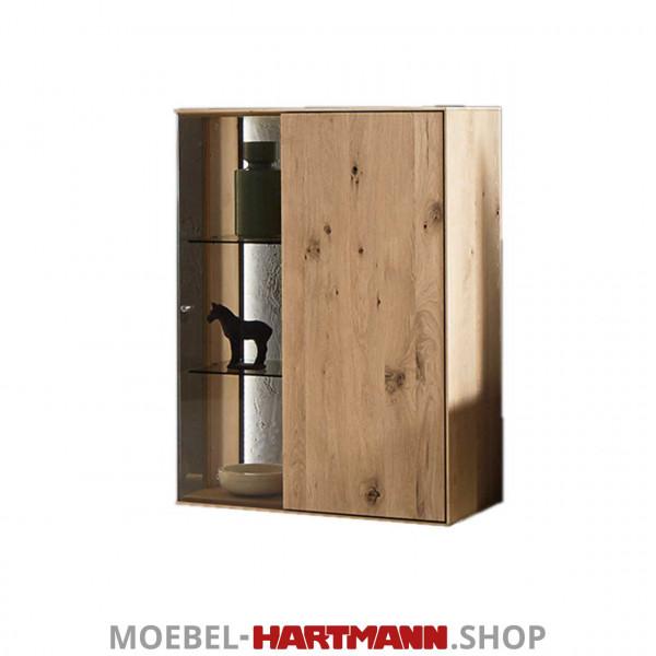 Hartmann Brik Haengeelement 5071