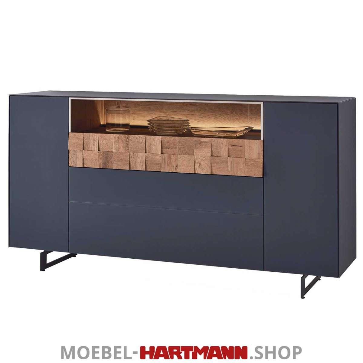 Hartmann Liv