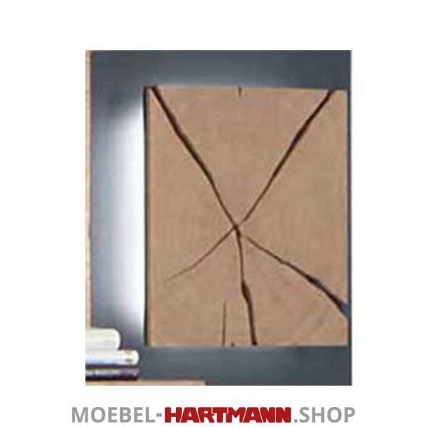 Hartmann Caya - Paneel-Beleuchtung 7170-9621
