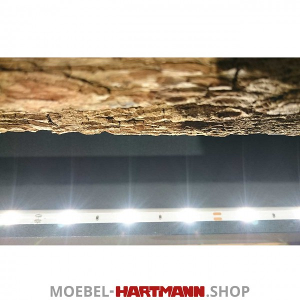 Hartmann Runa - Vitrinen-Beleuchtung 5,38 Watt 8410-9624