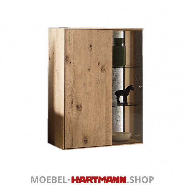 Hartmann Brik Haengeelemnet 5072