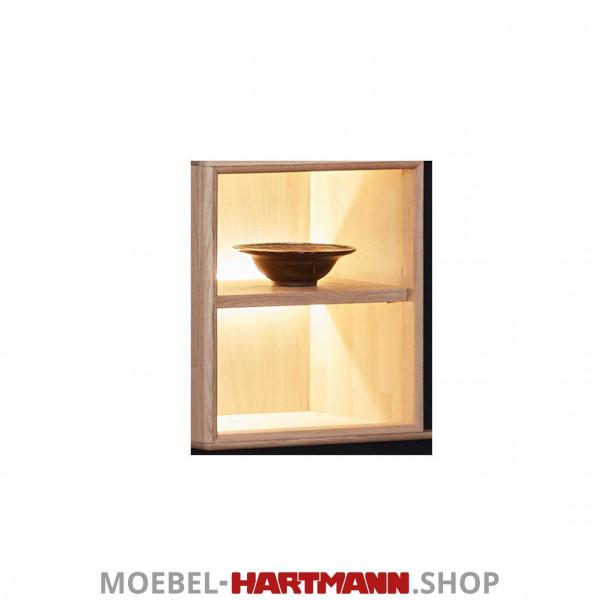 Schöner Wohnen Craft Vitrinen-Beleuchtung 9611 5,76 Watt