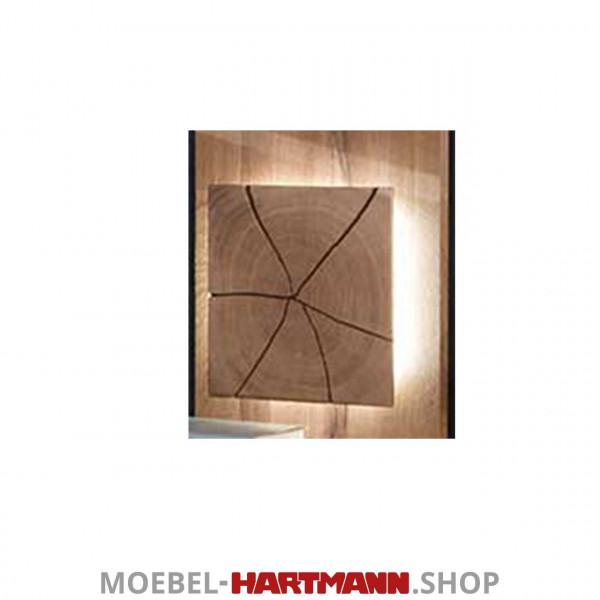 Hartmann Caya - Paneel-Beleuchtung 7170-9622