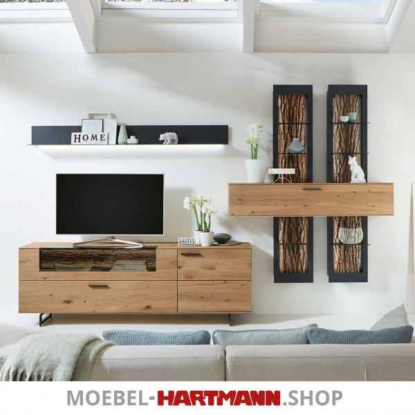 Hartmann Runa Wohnwand 8410 Nr. 26 inkl. Beleuchtung sofort verfügbar