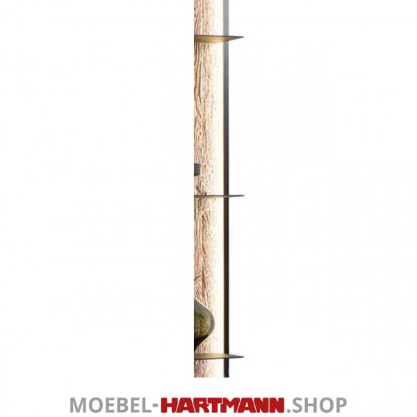 Hartmann_Yoris_Regal-Beleuchtung_7180-9822