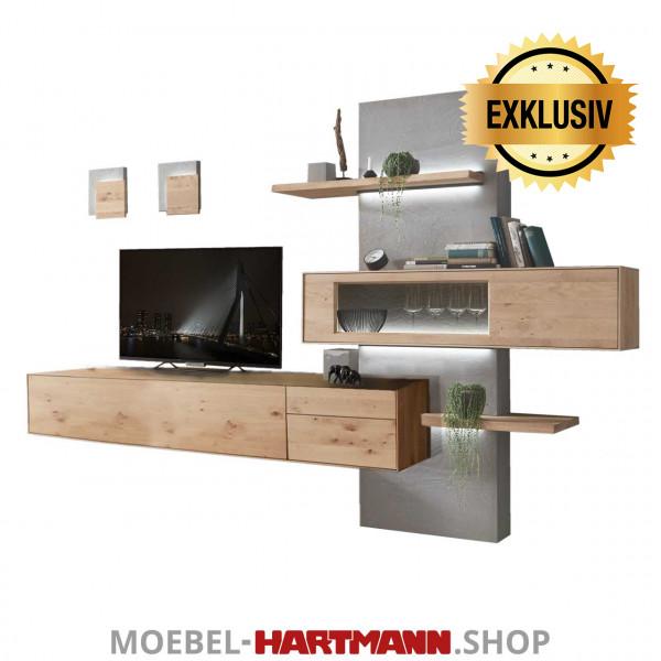Hartmann Brik - Wohnwand Nr. E 40 EXKLUSIV