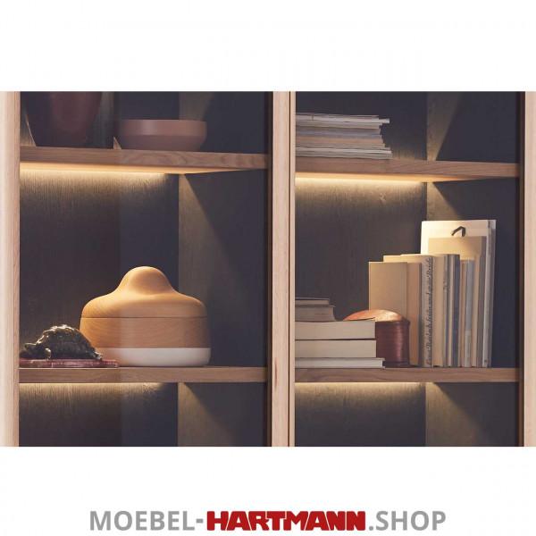 Schöner Wohnen Craft Vitrinen-Beleuchtung 9626 28,8 Watt