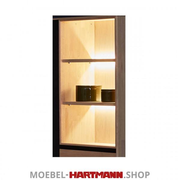 Schöner Wohnen Craft Vitrinen-Beleuchtung 9612 11,52 Watt