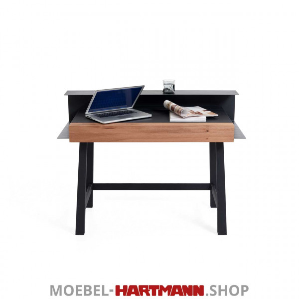 Hartmann_Yoris_Sekretaer_7180-4124_frontal